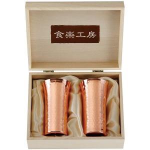 タンブラー/ビアカップ 〔2PCセット〕 径5.5×H10.5cm 日本製 銅製 省エネ効果 純銅鎚目一口ビール 『アサヒ』 〔カフェ バー〕 グラス 盃|sac