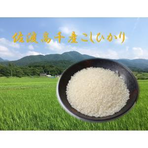コシヒカリ100%の佐渡米 高千産 20kg 平成29年度産 新米です!!|sadonosake-ito