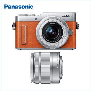 パナソニック(Panasonic) LUMIX(ルミックス) DC-GF10WA-D ダブルズームレ...