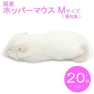 国産冷凍マウス ホッパーM 20匹 SAfarm...の商品画像