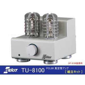 EK-JAPAN TU-8100 (イーケイジャパン PLC86 真空管アンプ・組立キット)