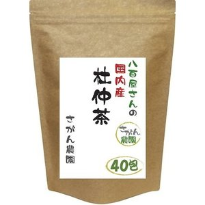 杜仲茶 国産 ティーパック 3.0g×40包 健康茶さがん農園