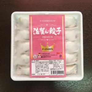 プレミアム世界のチーズ&ヘルシーおから餃子 10個入り(冷凍・粉付き) sagangyoza