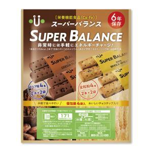 非常食 保存食 6年保存非常食 スーパーバランスの関連商品3