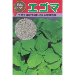 草勢は、野性的で、茎が太くて倒伏もなく、いたって作りやすい。エゴマに含まれるα-リノレン酸が成人病に...