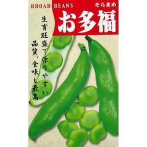 作りやすく、味よく、多収穫の得られるそら豆。莢は美しい緑色、一莢に2〜3粒の種入りが入り甘味、風味も...