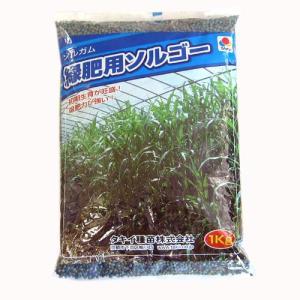 農業資材 緑肥の種子 緑肥用 ソルゴー 1Kg 土づくり 土壌改良におすすめの資材♪
