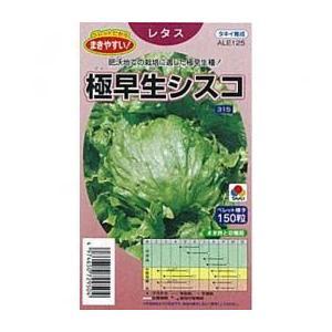 株張りがコンパクトで、密植栽培に適した、市場性の高い玉レタス。耐暑・耐病性にすぐれ、抽苔は比較的に遅...