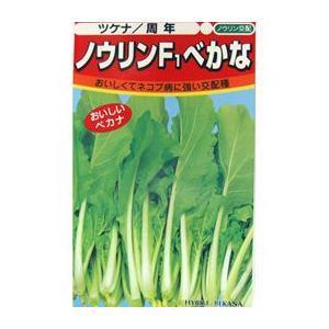ノウリンF1べかな (べか菜の種) 小袋 約20ml