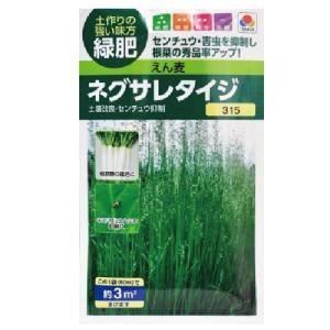 緑肥 えん麦 ネグサレタイジ 小袋(60ml)