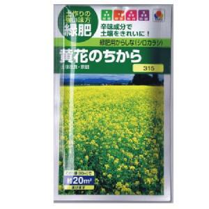 緑肥 緑肥用からしな 黄花のちから(からしなの種) 小袋 約小袋(約60ml)
