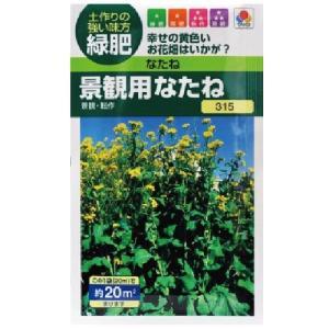 緑肥 景観用なたね 小袋(約20ml)