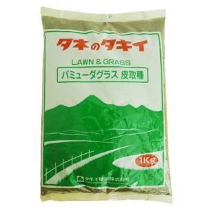 緑肥・牧草の種 バミューダグラス 種子 1kg