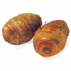 里芋(さといも) 予約 セレベス 種芋 1kg(7〜10個入り)
