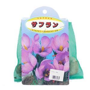 甘い香りの綺麗な花を楽しめます。美しい淡紫色花と細葉が、同時期にバランスよく展開する。花の香りも魅力...