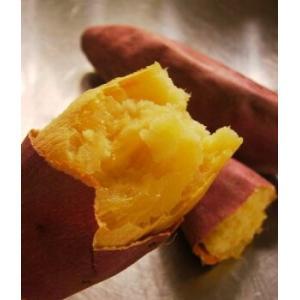 まるで絹のような舌触りとねっとり感がたまらない新品種!!どのサツマイモよりおすすめです 容量:25本...