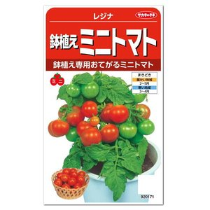 サカタのタネ 鉢植えミニトマト レジナ 種 (メール便対応)