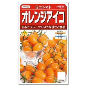 サカタのタネ ミニトマト オレンジアイコ  種  メール便対応  たね 種子家庭菜園 とまとのタネ ...
