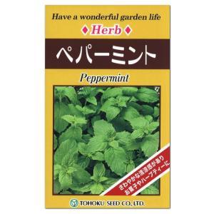 トーホク ハーブ ペパーミント 種  多年草 家庭菜園 タネ たね 種子 ハーブ HERB ハッカ メール便対応|saienlife