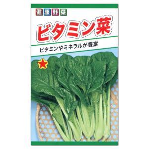 トーホク ビタミン菜 種 (メール便対応) たね 種子