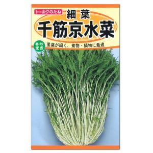 千筋京水菜はの純白の細い茎と緑の葉を より細くした品種です。 繊細な歯切れの良さが抜群の京野菜で、 ...