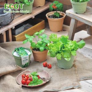 古紙100%の再生紙ポットで育てる 野菜栽培キットです。 からだと地球にやさしい「エコット」で 野菜...