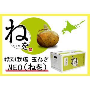 E-6 新篠津村産:新篠津つちから農場 特別栽培 玉ねぎNEO(ねを) 2L〜Mサイズ・約5kg・1箱|saijo