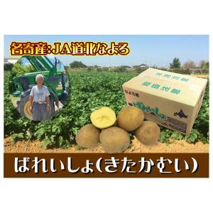 C-11 名寄産 ばれいしょ(きたかむい) L〜Mサイズ・約10kg・1箱|saijo