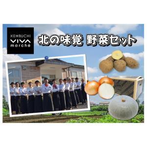産直品 A-3 剣淵産:絵本の里けんぶちVIVAマルシェ 北の味覚 野菜セット saijo