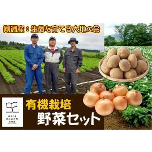B-1 剣淵産:生命を育てる大地の会 有機栽培野菜セット 1箱|saijo