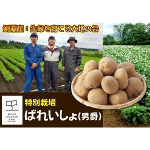 産直品 A-10 剣淵産:生命を育てる大地の会 特別栽培ばれいしょ(男爵) saijo