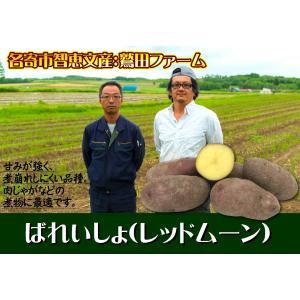 C-4 名寄市智恵文産:鷲田ファーム ばれいしょ(レッドムーン) L〜Mサイズ・約10kg・1箱|saijo