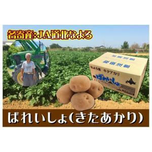 C-10 名寄産 ばれいしょ(きたあかり) Lサイズ・約10kg・1箱|saijo
