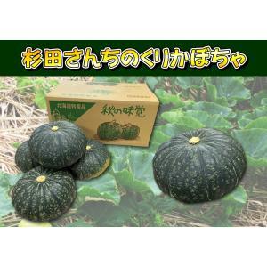 D-4 美深町産: 杉田さんちのくりかぼちゃ(栗ゆたか) 6〜7玉入・約8kg・1箱|saijo