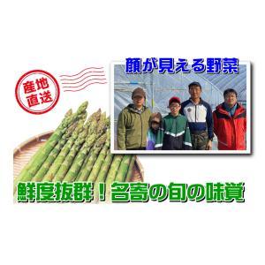 A-1 風連産:リリー・ファーム直送品 藤垣さんちのハウス栽培グリーンアスパラ 2Lサイズ・約1kg入・1箱|saijo