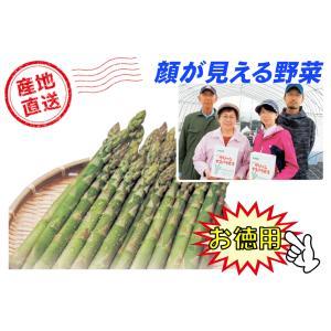 A-3 風連産:リリー・ファーム直送品 藤垣さんちのハウス栽培グリーンアスパラ L〜Mサイズ込・約1.5kg入・1箱|saijo