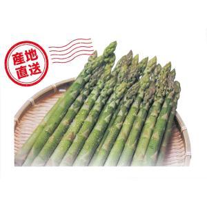 【A-5】名寄市智恵文産:グリーンアスパラ Lサイズ・約1kg入・1箱|saijo