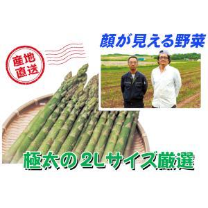 A-4 名寄市智恵文産:鷲田ファーム直送品 グリーンアスパラ 2Lサイズ・約1kg入・1箱|saijo