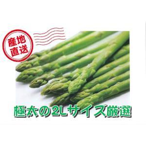 【B-2】下川町産:グリーンアスパラ 2Lサイズ・約1kg入・1箱|saijo