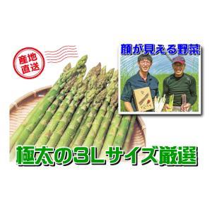 A-7 士別産:おがた農園直送品 おがたさんちのハウス栽培グリーンアスパラ 3Lサイズ以上・約600g入・1箱|saijo