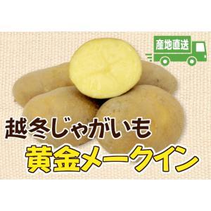 A-3 常呂町産: 越冬じゃがいも 黄金メークイン 2L〜Mサイズ・約10kg・1箱 saijo