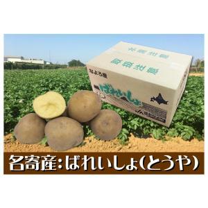 産直品 B-6 名寄産:JA道北なよろ ばれいしょ(とうや) saijo