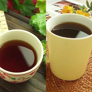 ゴーヤ茶 プーアル茶 燃焼ゴーヤプーアル茶|saika