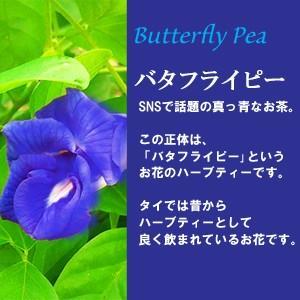 青いお茶 バタフライピー  色が変わる アンチャン ハーブティー 蝶豆花茶 自由研究 バタフライピーティー|saika|02