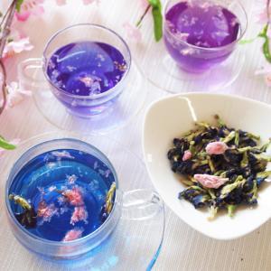 夜明けの桜・バタフライピー・桜ブレンド20g 青いお茶 アンチャン ハーブティー 蝶豆花茶 自由研究|saika