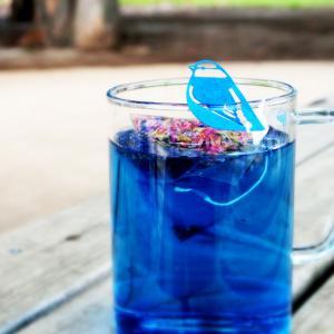 コップのフチに青い鳥がとまる!今まで見たことない、真っ青な色合いのハーブティー。タイではメジャーな飲...