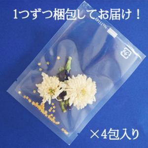 星に願いを・バタフライピー4包 青いお茶 アンチャン ハーブティー 蝶豆花茶 自由研究|saika|02