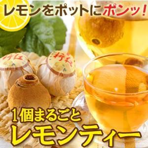 紅茶 1個まるごとレモンティー5個  レモンティー おもしろ 無糖|saika