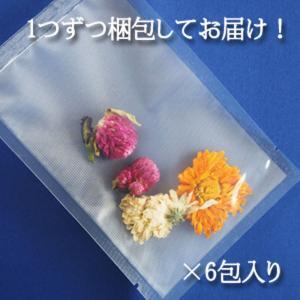 花火・バタフライピー6包 青いお茶 アンチャン ハーブティー 蝶豆花茶 自由研究 saika 02