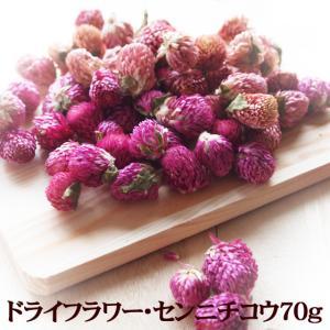 ドライフラワー・センニチコウ(紫)70g 花材 クラフト 乾燥花 千日紅 ハーブティー|saika